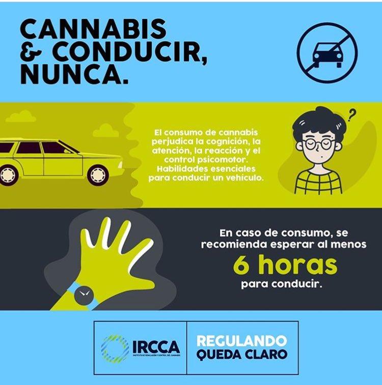 Conducción y Cannabis